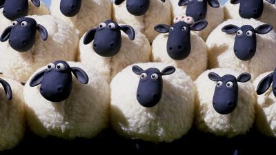 Des moutons de panurge qui suivent sans reflechir